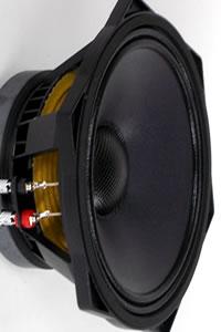 Haut-parleurs PHL Audio diamètre 25 cm / 10 pouce